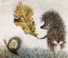 View Craftyhedgehog's Profile