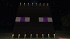 View Minecraftwatcher's Profile