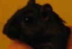 View sasas09's Profile