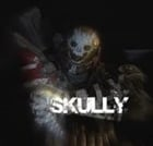 View skully250's Profile
