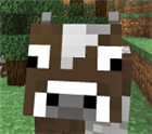 View Minecraft_Champ6's Profile