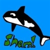 View shamoo479's Profile