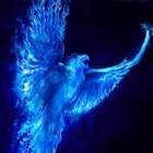 View BluePhoenix175's Profile