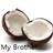 View CoconutCakeKing's Profile