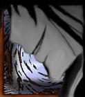 View Barkwindbat's Profile