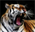 View Tiger_Roar_4's Profile