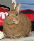 View bunny7741's Profile