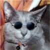View A_Chill_Cat's Profile