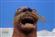 View Kyron's Profile