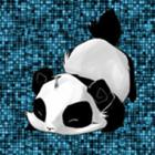 View Pandahead's Profile