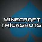 View MinecraftTrickshots's Profile