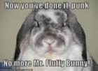 View Fluffy_Bunny123's Profile
