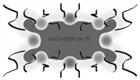View microtavor5's Profile