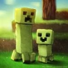 View Minecrafter4X's Profile