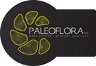 View Paleoflora's Profile