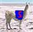 View SuperLlama's Profile