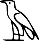 View Hieroglyph's Profile
