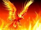 View Phoenix067's Profile