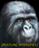 View BULLETSPONGE's Profile