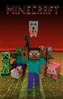 View Minecrafter3242's Profile
