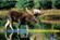 View moosemunchee's Profile