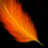 View Fire_Feather's Profile