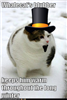 View thefatcat235's Profile