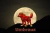 View Umbraus's Profile