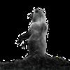 View diamondminer757's Profile