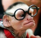 View MonkeyMelon's Profile