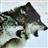 View bobcatfish9's Profile