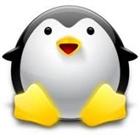 View PenguinsFTW's Profile