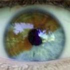 View DooDooDooDoo's Profile
