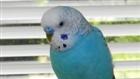 View speedwe007's Profile