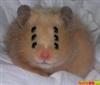View Evil_Hamster's Profile