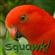 View SquawkingParrot's Profile