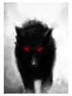 View steelwolf19's Profile