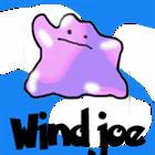 View WindJoe's Profile