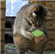 View kittycubical's Profile