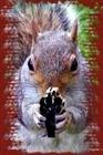 View BoneSquirrel's Profile