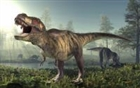 View DinoLover69's Profile