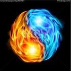 View firefliesalco's Profile