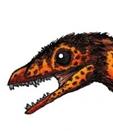 View Sinornithosaurus's Profile