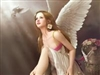 View AngelFeather's Profile