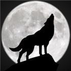 View GhostWolf2398's Profile