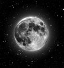 View Moon's Profile