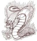 View Cobra_Phoenix's Profile