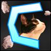 View MrSquirrel216's Profile