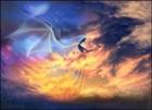 View Lady_Stormdancer's Profile