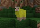 View SheepBuildz's Profile
